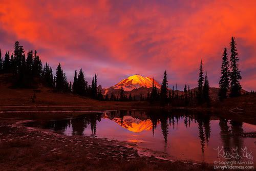 Fiery Sunrise Over Mount Rainier, Tipsoo Lake, Mount Rainier National Park