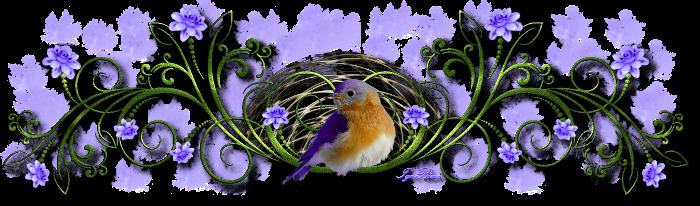 """Résultat de recherche d'images pour """"separateur de texte oiseaux"""""""