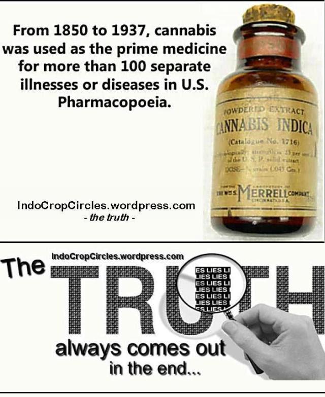 cannabis-maedicine