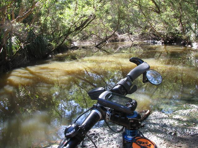 Elimbah Creek