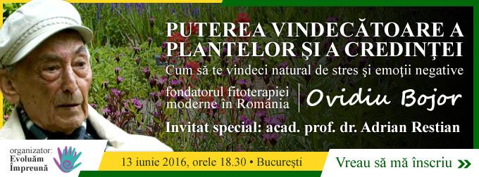 banner_Ovidiu_Bojor_ver1_2