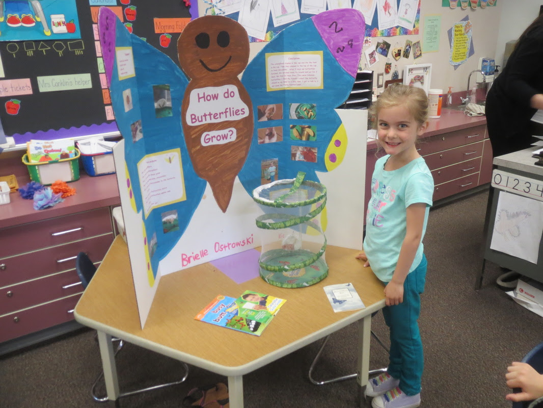 Science Fair Kindergarten - Conklin's Chickadees at the ...