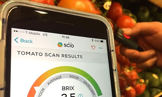 What Happened When We Took the SCiO Food Analyzer Grocery Shopping