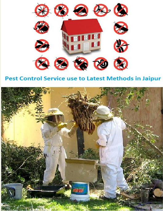Pest Control Service use to Latest Methods in Jaipur