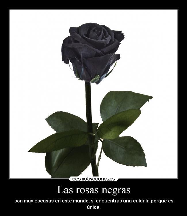 Las Rosas Negras Desmotivaciones