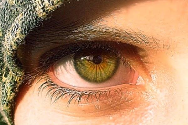 Hazel what is look color like the Hazel Eyes: