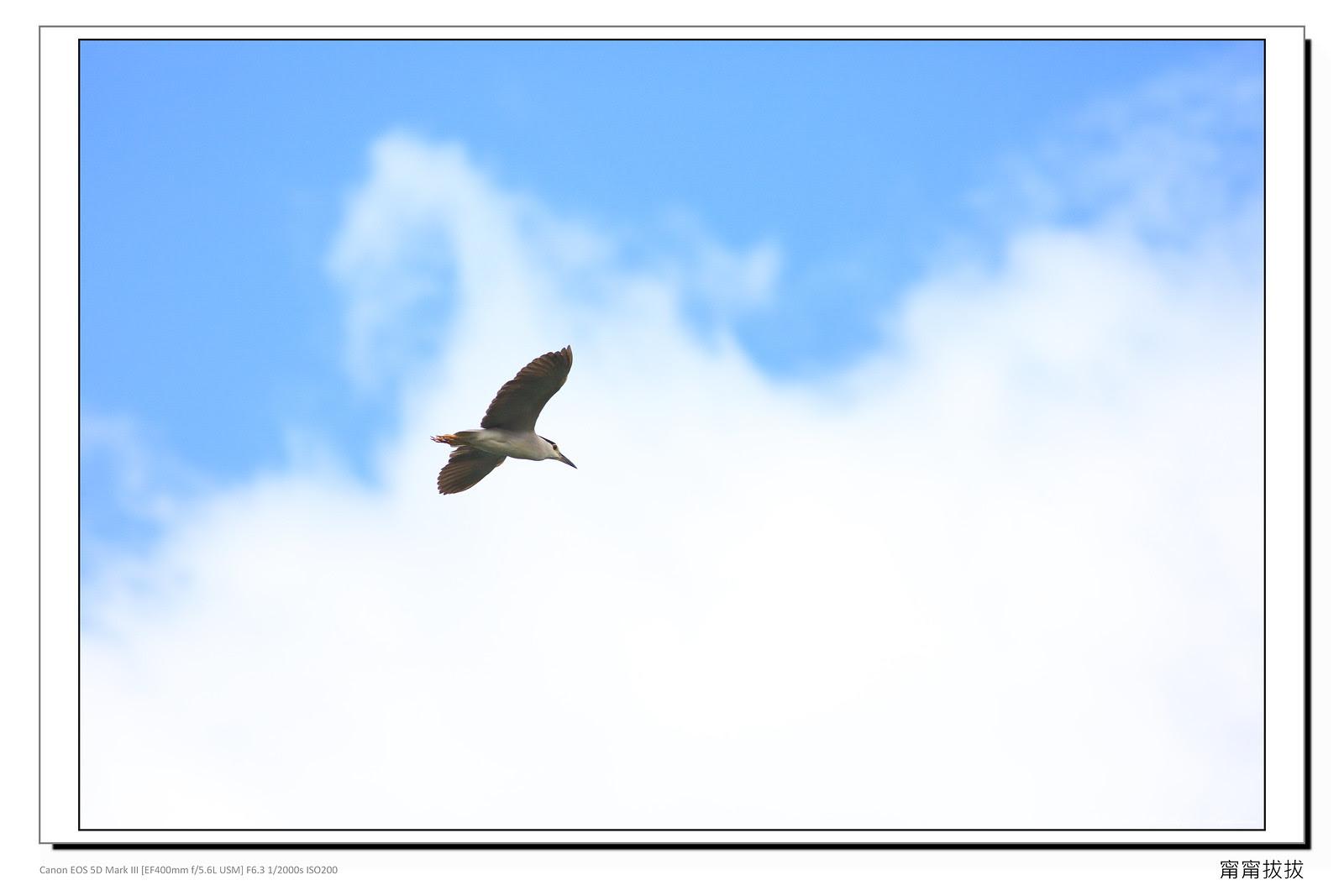 frame_BING6928