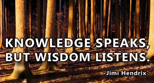 The Differences Between Knowledge Wisdom And Insight Awaken