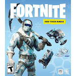 WB Games Fortnite Deep Freeze Bundle - Nintendo Switch
