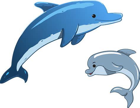 lumba lumba laut hewan ibu  gambar vektor gratis