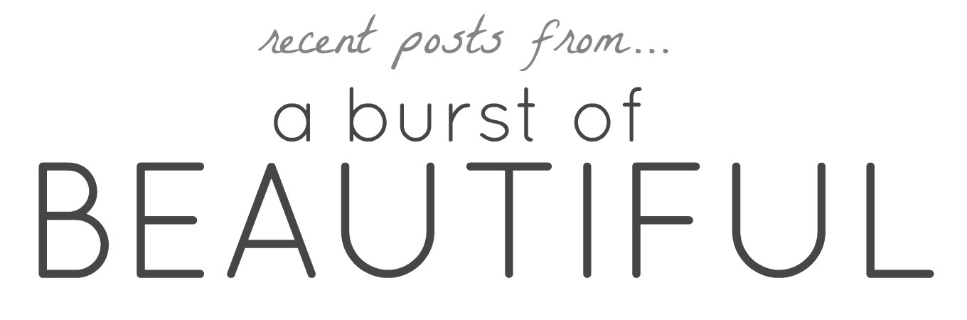 Recent Posts From_A Burst of Beautiful_2016