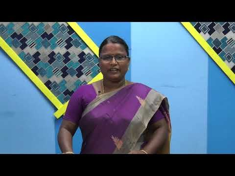 12th Bio Botany குரோமோசோம் அடிப்படை அலகு 7 Kalvi TV