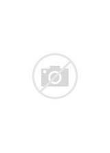 French Door Refrigerator: Kenmore Elite Refrigerator