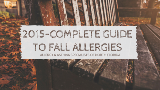 Allergy and Asthma Specialists of North Florida