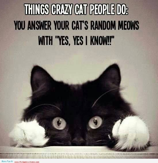 Crazy People Quote Quote Number 616968 Picture Quotes