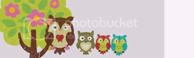 Owl banner Pictures, Images and Photos