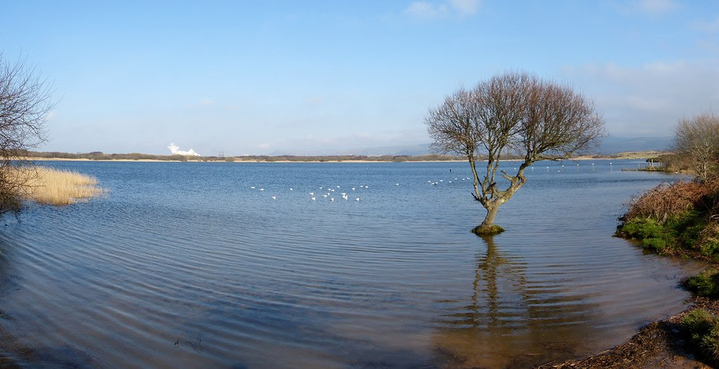Kenfig Pool