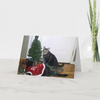 Kitties with Christmas Tree Greeting Card card