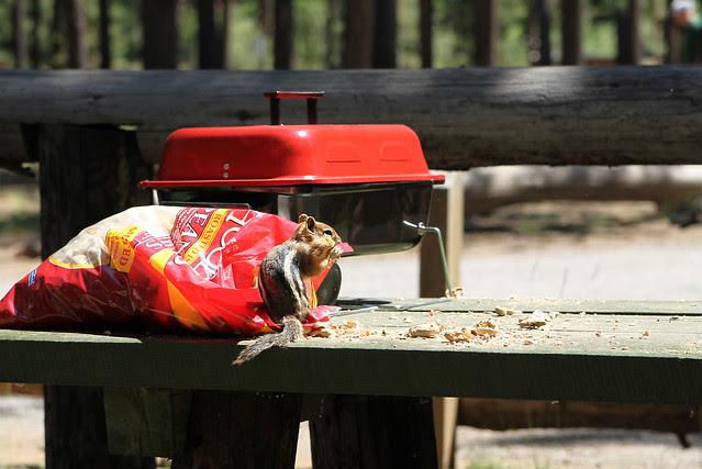 CampingPart2B