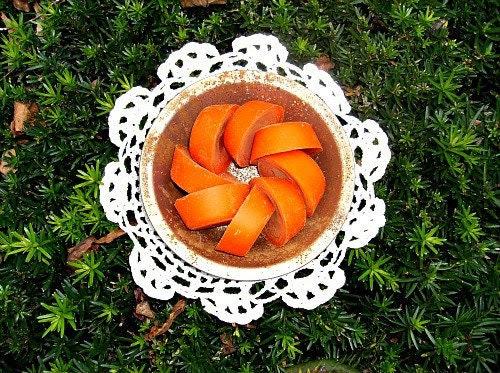 Sweet Pumpkin Harvest 8 Wax Tarts and Halloween Harvest Black Candle Pan
