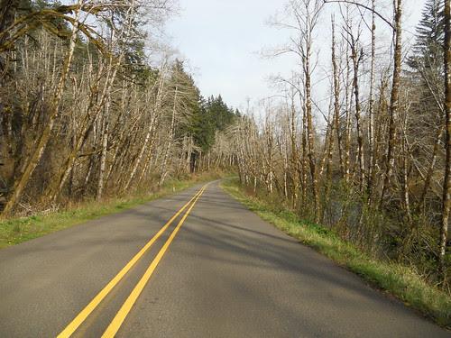 Little Nestucca Road
