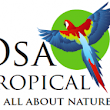 Osa Tropical | Your Tour, Travel and Real Estate Company on the Osa PeninsulaYour SEO optimized title