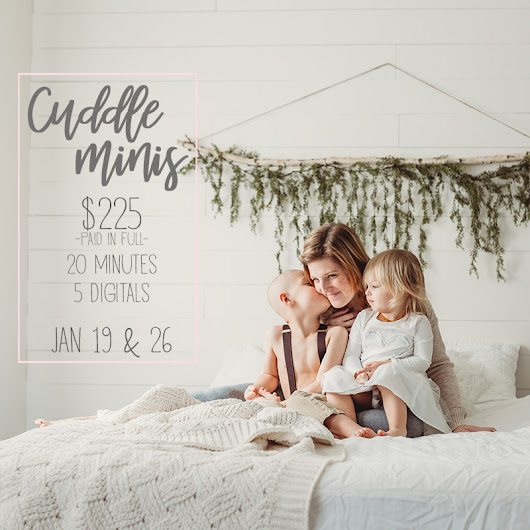 Cuddle Mini Sessions :: NOW BOOKING