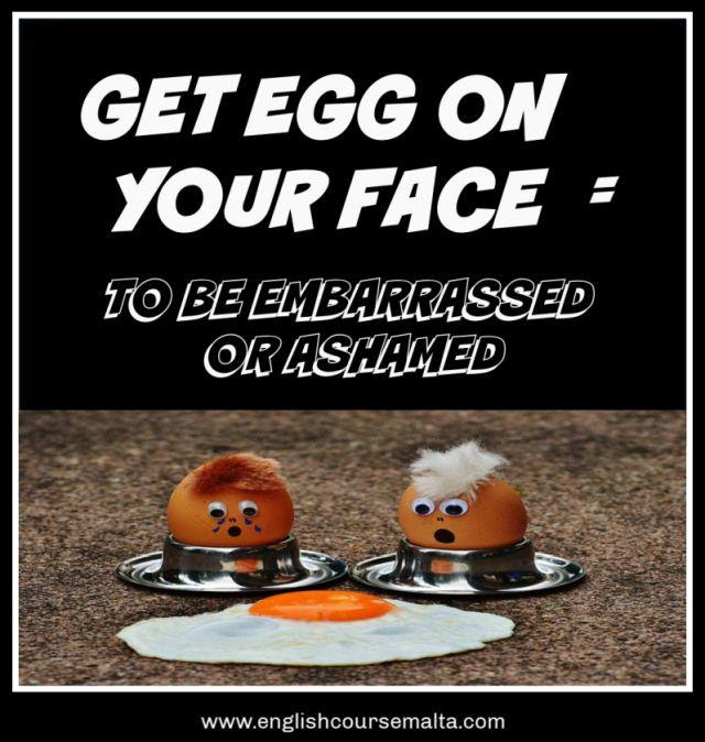 EGG IDIOMS, PROVERBS AND EXPRESSIONS - English Course Malta