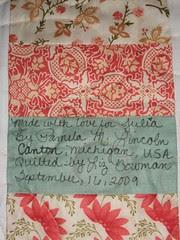 Brazilian baby quilt 009