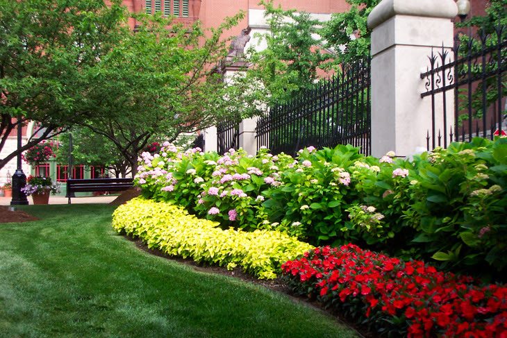 st louis commercial landscaping