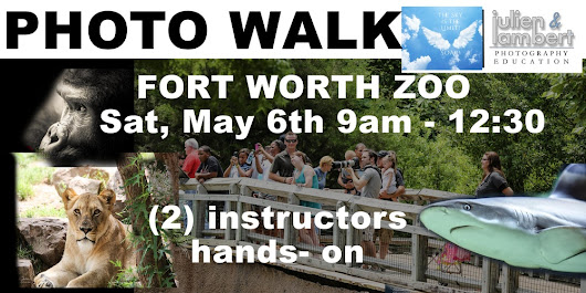 """Walking Photography Class"" The Fort Worth Zoo"