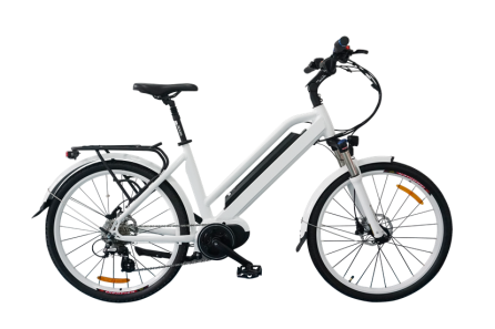 Stylish Electric Bicycle, classic model, C19