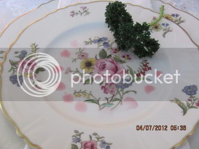 photo Passover2012015_1.jpg