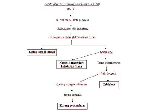 patofisiologi diabetes melitus gestasional blog kesehatan