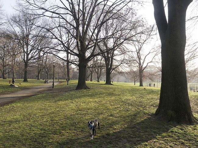 Prospect Park, am