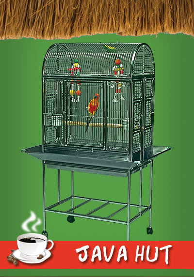 Java Hut Haven Stainless Steel Bird Cage – Great for Small Parrots! – Paco Parrot's Blog