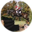 "What Does it Mean to ""Ride Forward""? (Current freebie!) - My Virtual Eventing Coach"