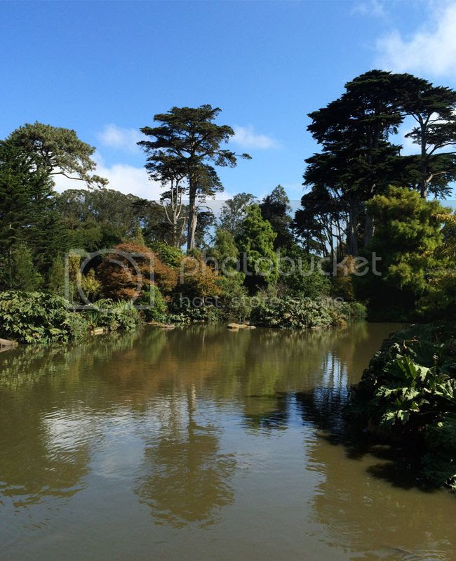 SanFrancisco Botanical Gardens Golden Gate Park