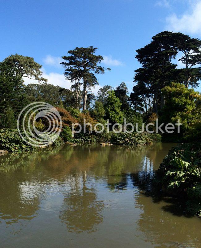 SanFrancisco Botanical Gardens Golden Gate Park