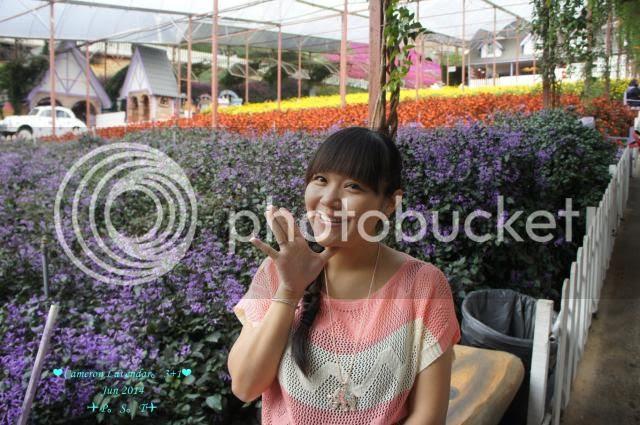 photo 32_zps917d17fd.jpg