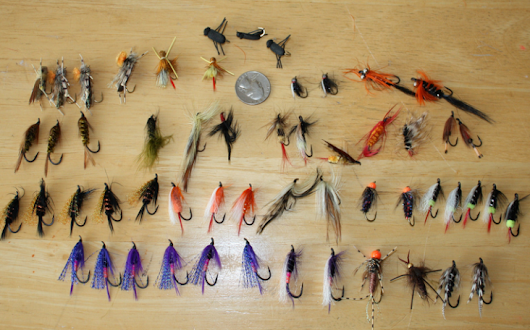 Preparing Yourself for Fly Fishing: Essential Tools Needed