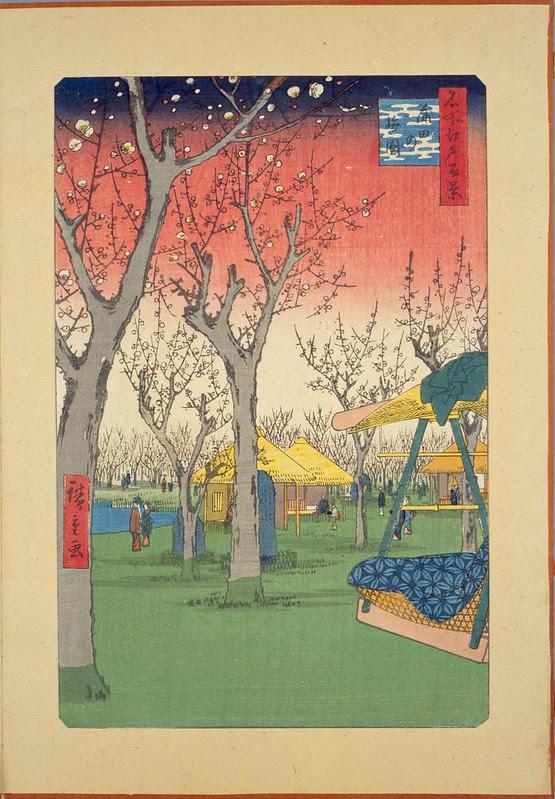 Plum Orchard in Kamada