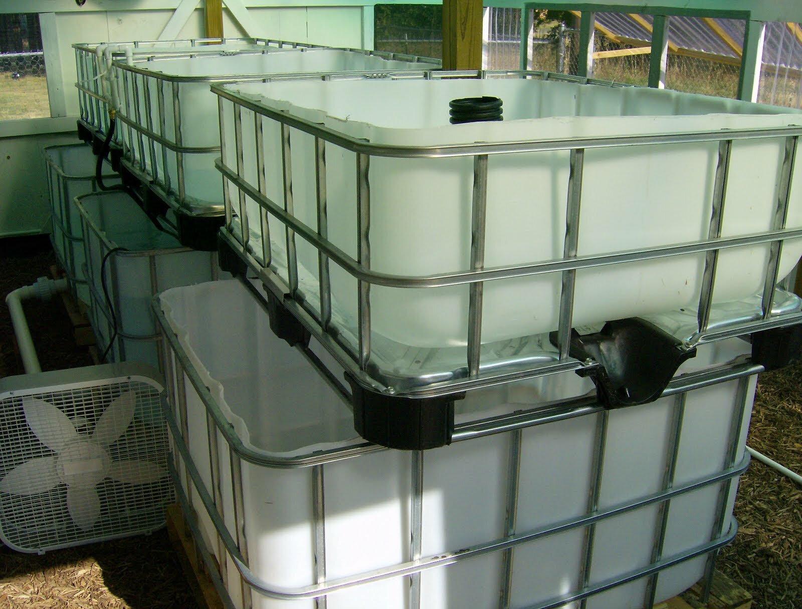 IBC Tote Aquaponics