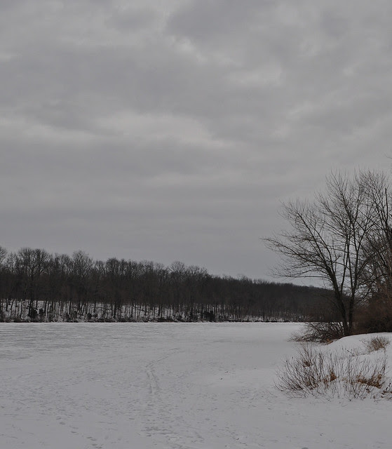 Lake Nockamixon (2)