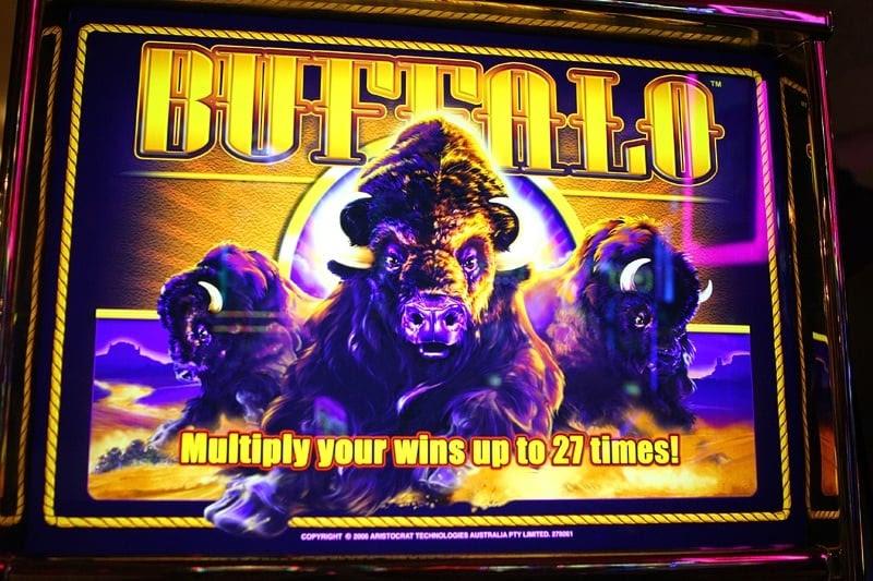 Free casino slot games buffalo