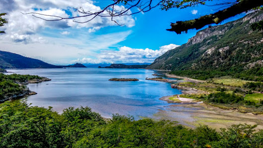 Half day tour to the Tierra del Fuego National Park from Ushuaia