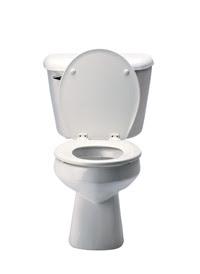 Projectsucces Vrijmibo Wat Te Doen Als Je Telefoon In Het Toilet