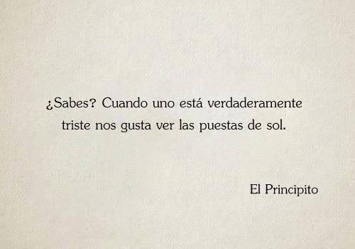 Frases Amor Triste Sol El Principito Frases De Libros Frases En