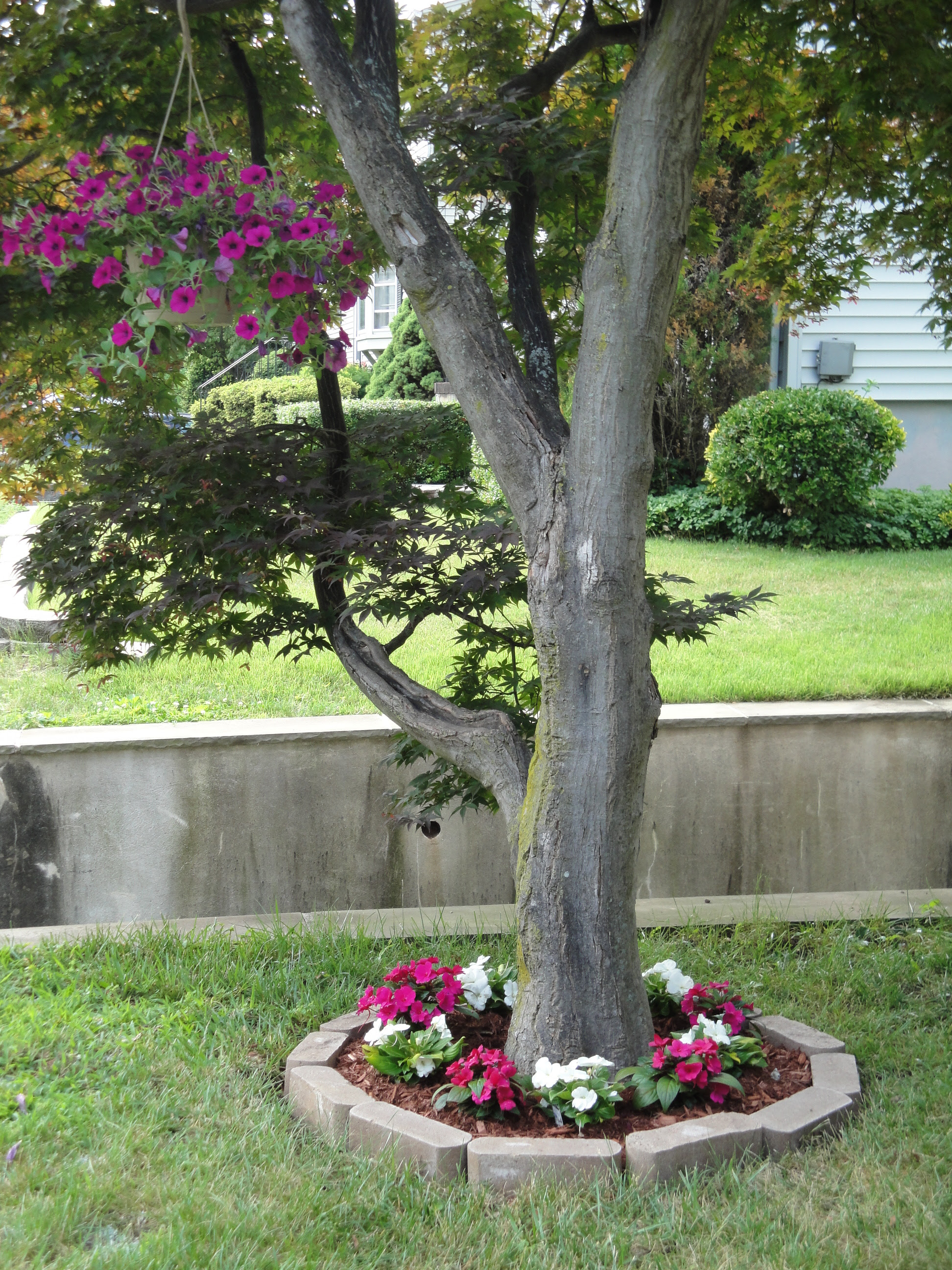 Fix It Friday Tree Flower Bed