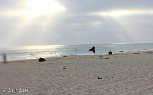 Carlsbad State Beach